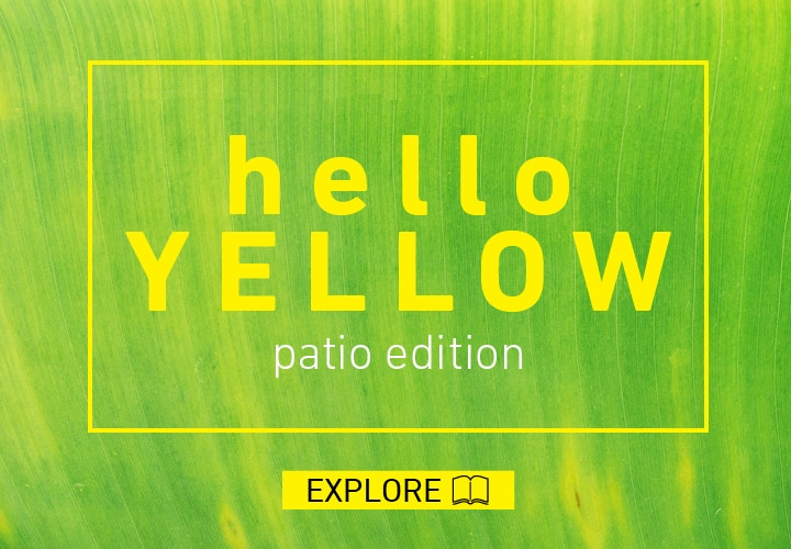 Hello Yellow - Patio Edition